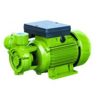 China Electric Water Pumps For Houses , Vortex Water Pump For Hotel Using 0.75HP wholesale