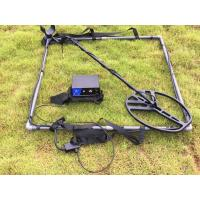 China Pluse Induction High Depth Waterproof Metal Detector Ground Gold Searching wholesale