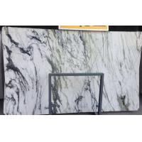 Panda white marble natural stone slab