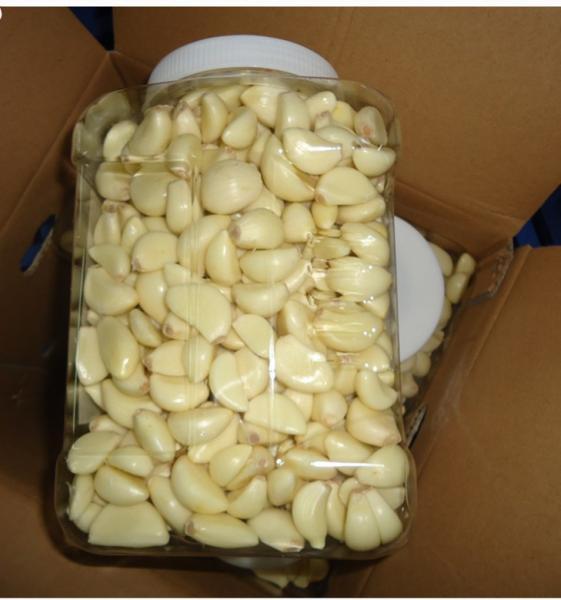 2015-new-crop-peeled-garlic-dehydrated-garlic
