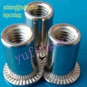 China flat head rivet nut knurled/round body on sale