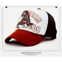 China Embroidered promotional baseball cap/hat wholesale