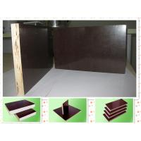 China Eucalyptus core Concrete Formwork plywood for building usage 12mm - 21mm , Eco friendly wholesale