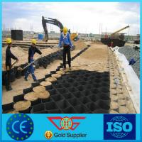 China High Strenth Grass Paver Geocell wholesale