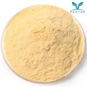 China Papaya Powder wholesale