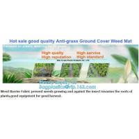 China prevent insects,tree planting,agriculture protection Plastic weed barrier,weed matt Bio-degradable Agricultural PP Weed on sale
