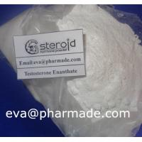 Quality Buy Testosterone Enanthate Powder Bodybuilding Hormones For Muscle Growth for sale