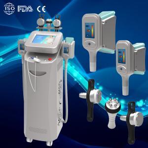 China cryolipolysis slimming machine Fat Reducing fat freeze slimming cryolipolysis slimming wholesale