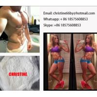 China Stanozolol / Winstrol Anabolic Steroid Hormone For Muscle Building Female Athletes wholesale