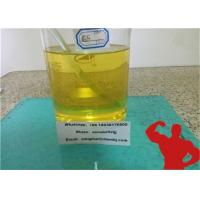 China Injectable Semi-Finished Steroids Drostanolone Propionate100mg/ml Masteron100 for Bodybuilding wholesale