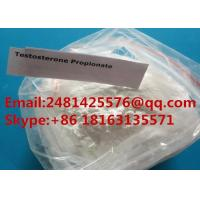 China Test Propionate Raw Muscle Growth Steroid Testosterone Propionate Powder CAS 57-85-2 wholesale