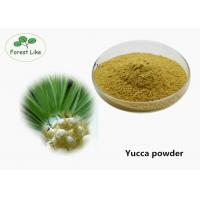 China Health Care Plant Extract Powder Yucca Extract Powder Treatement Diabetes on sale