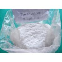 China Muscle Building Testosterone Propionate Test Prop Powder CAS NO 57-85-2 wholesale