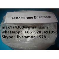 China Raw Testosterone Enanthate Steroid Powder CAS 315-37-7 For Muscle Building wholesale