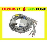 China Long Screw Schiller EKG Cable 10 lead ECG Cable and Leadwires for AT3,AT6,CS6,AT5, AT10,AT60 wholesale