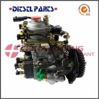 China Diesel Fuel Injection Pumps ADS-VE4/11E1800L019 from Diesel factory wholesale