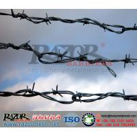 China Cattle Barbed Wire Fence wholesale