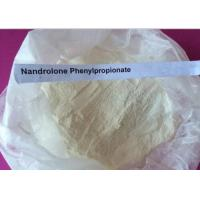 China Steroid Raw Powder Nandrolone Phenylpropionate For Bulking Cycle CAS NO.62-90-8 wholesale