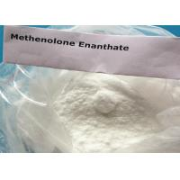 Quality Muscle Gaining Methenolone Enanthate Powder Primobolan Depot Superdrol CAS 303-42-4 for sale