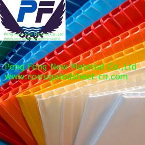 China 2-12mm polypropylene twin-wall hollow sheet wholesale
