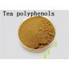 China Antioxidant Natural Green Tea Extract Tea Polyphenols Catechins EGCG Brown wholesale