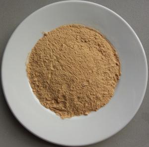 China Toasted garlic powder wholesale