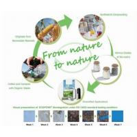 Compostable Corn Starch Biodegrdable Eco-friendly Plastic Ziplcok Bag