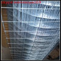 China 304 stainless steel ,28 Gauge welded wire mesh (competitive quote) wholesale