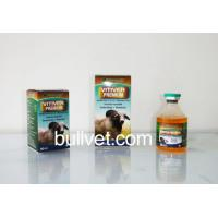 Buy cheap ivermectin injection 1% from wholesalers
