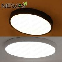 China modern surface mounted led ceiling light decorative acrylic ceiling lamp for living room wholesale