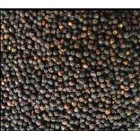 China Black pepper extract  PharmacologyAction: used extensively in Ayurvedic medicine to treat wholesale