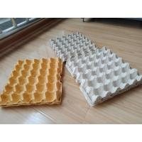 China Hot Pressing Pulp Molding Machine , Egg Tray Production Line With Germany Valves wholesale