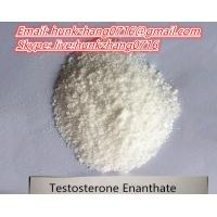 China 99% purity Pharmaceutical Trenbolone Enanthate 200mg /Ml Oil Injection 10161-33-8 white powder wholesale