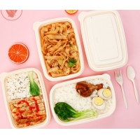 China 1000ml Disposable Lunch Box Packaging Biodegradable Cornstarch Lunch Box wholesale