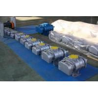China Roots Blower (Compressor) Vacuum Pump (NSRH) on sale