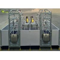China Welding Pig Farrowing Crate , Turn Around Farrowing Crates PVC Fence wholesale