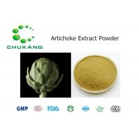 China Natural Ingredients Artichoke Extract Powder 2.5% 5% Cynarin on sale
