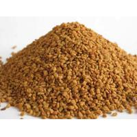 China nature herbal Fenugreek extract 5:1 wholesale