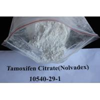 China Safety Sustanon 250 Injectable Anabolic Steroids for Bodybuilding , GMP wholesale
