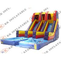 China Big Inflatable Water Slides For Sale on sale