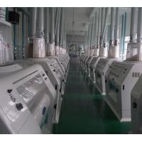 Large Scale Wheat Milling Project Design and Manufacture