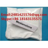 China CAS 521-11-9 Raw Testosterone Steroids Powder Mestanolone For Muscle Growth wholesale