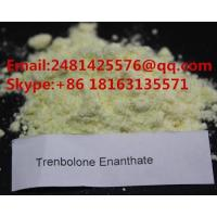 China High Purity Raw Steroid Trenbolone Enanthate Powder CAS 10161-33-8 For Bodybuilding wholesale