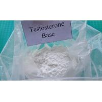 China Pharmaceutical Raw Testosterone Powder Testosterone Base CAS 58-22-0 Muscle Enhancement Steroids for Male wholesale