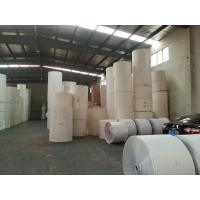 China Customized Printing White PE Coated Printed Paper Roll for Making Paper Cups wholesale