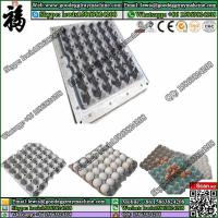 China Paper insert shoe trays pulp moulding mold wholesale
