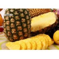 China Baking Bacterial Protease Enzyme Pineapple - Derived For Meat Tenderizing wholesale