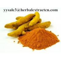 China HOT SELLING Turmeric extract,curcumin 95%,CAS .:458-37-7,Lipid-lowering,Anti-inflammatory,  Chinese MANUFACTURER wholesale