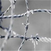 China Hot-dip Zinc Plating Barbed Wire wholesale