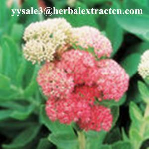 China Rhodiola Rosea P.E., Salidrosides 3%, CAS NO.:10338-51-9, Anti-aging, anti-anoxidant,, natural herbal extract, Yongyuan wholesale